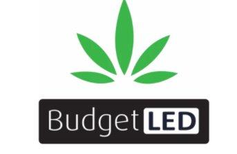 Budget LED coupon