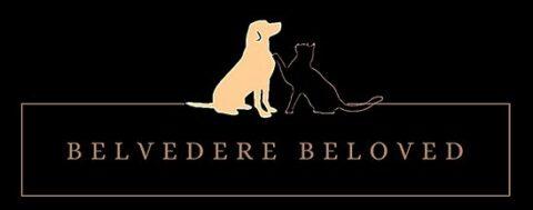 Belvedere Beloved coupon